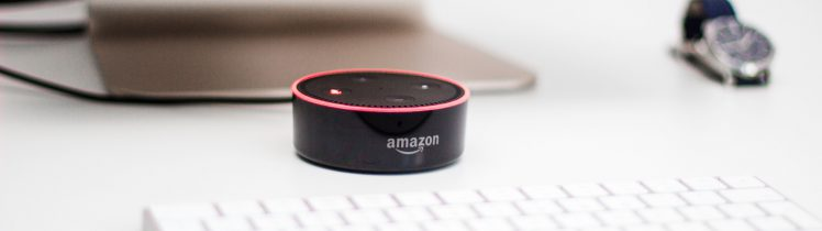 All your business needs to know about smart speakers
